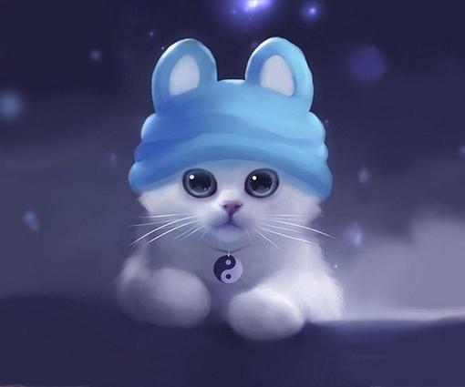 戴蓝帽子的小白猫 图片