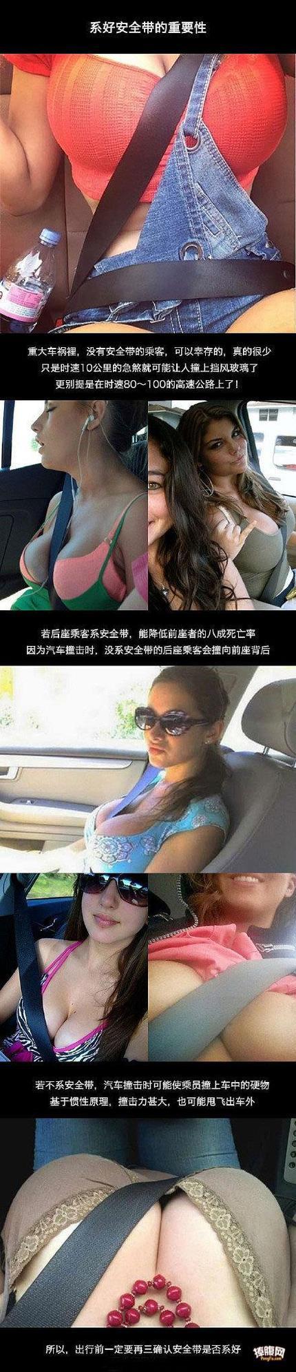 行车安全一定要带安全带
