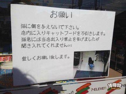 日本的部分猫星人