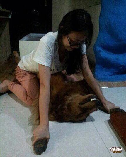 女大学生日狗的搞笑图片_真实版,真是日了狗了!_搞笑__hao123上网导航