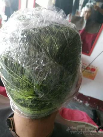 哥们,你这是在染绿色的头发吗?